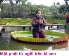 4 Chua phuoc kieng 2