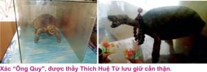 4 Chua phuoc kieng 4