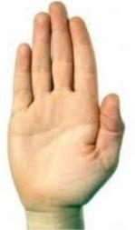9 Ban tay 1