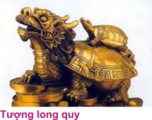 9 Huong nha 4