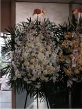 Vong hoa