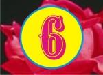 9 So 6A