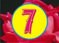 9 So 7A