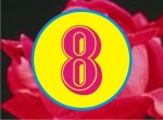 9 So 8A