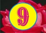 9 So 9A