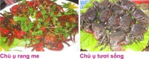 3 Chu u 2