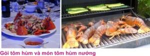 9 Tom hum 5