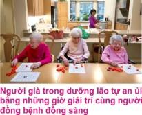 9 Duong lao 3