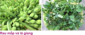 9 Binh Duong 5