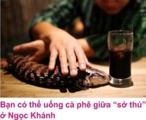 8 Cafe Hanoi 1
