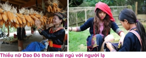 9 Phong tuc A4