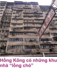 7 Hong Kong 5