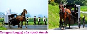 4 Nguoi Amish 5
