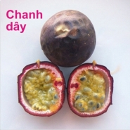 5 Chanh day