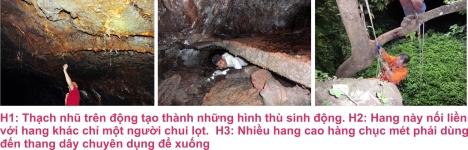 8 Hang dong 3