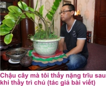 9 Khong an cho 2