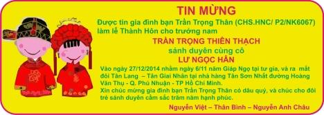 Tin mung