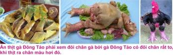 3 Dong tao 5